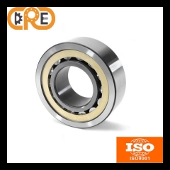 Standard Single Row Cylindrical Roller Bearing