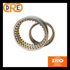 Double Row Cylindrical Roller Bearing catalog